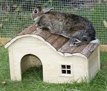 Domek pro malé hodavce, s kulatou střechou,30x20