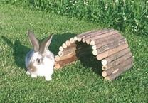Most pro králíky