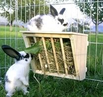 Jesle na seno pro králíky, dřevěné, 25x17x20cm
