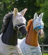 Maska proti hmyzu Waldhausen, modrá, pony