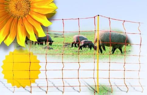Síť pro elektrické ohradníky na ovce Ovinet 108 cm, 50 m, 1 hrot, oranžová, Oranžová, 2 hroty