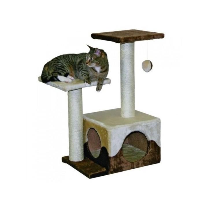 Kočičky a kohouty